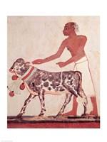 Peasant leading a cow to sacrifice Fine-Art Print