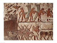 Harvesting papyrus and a group of cows, Old Kingdom Fine-Art Print