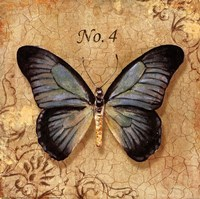 Clair's Butterfly I Fine-Art Print