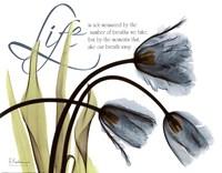 Mineral Blue Tulips...Life Fine-Art Print