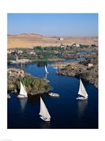 Feluccas on the Nile River, Aswan, Egypt Fine-Art Print