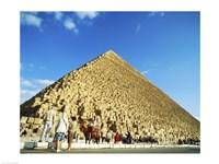 Giza Pyramids, Giza, Egypt (camel) Fine-Art Print