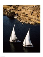 Two sailboats, Nile River, Egypt Fine-Art Print