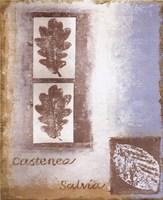Leaf II Fine-Art Print