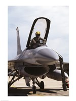 U.S. Air Force  F-16 Falcon Jet Fighter Fine-Art Print