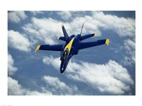 Blue Angels F-18 Hornet Fine-Art Print