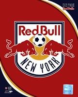 2011 New York Red Bulls Team Logo Fine-Art Print