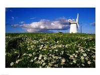 Ballycopeland Windmill, Millisle, Northern Ireland Fine-Art Print
