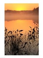 Sunrise over a lake Fine-Art Print