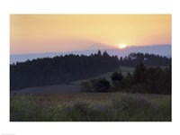 Panoramic view of a sunrise, Oregon, USA Fine-Art Print