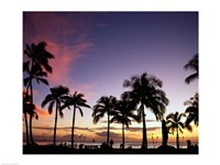 Silhouette of palm trees on the beach, Waikiki Beach, Honolulu, Oahu, Hawaii, USA Fine-Art Print