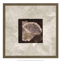 Ginko Leaf Fine-Art Print