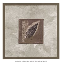 Elm Leaf Fine-Art Print