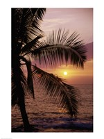 Kohala Coast at sunset, The Big Island, Hawaii, USA Fine-Art Print