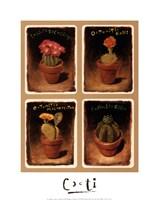 Cacti Fine-Art Print