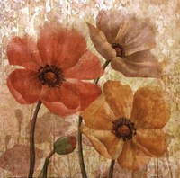 Poppy Allure I Fine-Art Print
