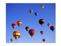Large Group of Hot Air Balloons Flying Fine-Art Print