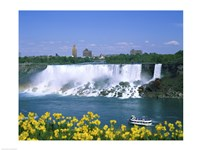 Flowers in front of a waterfall, American Falls, Niagara Falls, New York, USA Fine-Art Print