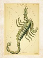 Scorpio Zodiac Sign Fine-Art Print