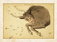 Taurus Zodiac Sign Fine-Art Print