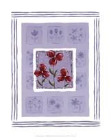 Jewels Fine-Art Print