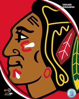 Chicago Blackhawks 2011 Team Logo Fine-Art Print