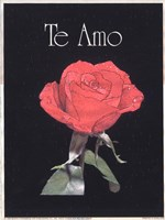 I Love You - Spanish Fine-Art Print