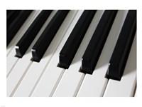 Piano Keys Fine-Art Print