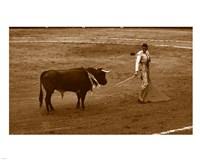 Matador and Bull Fine-Art Print