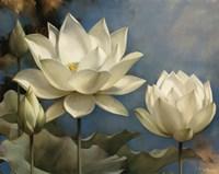 Lotus I Fine-Art Print
