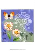 Butterflies Inspire III Fine-Art Print