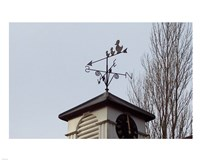Weathervane on Damerham Village Hall Fine-Art Print