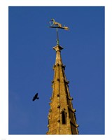 Weathervane on Hanslope Church Fine-Art Print