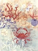 Floral Frenzy Coastal IV Fine-Art Print