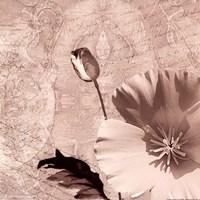Vintage Rose I Fine-Art Print