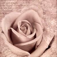 Vintage Rose II Fine-Art Print