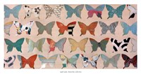 Butterfly Collection Fine-Art Print
