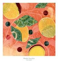 Citrus Limon I Fine-Art Print