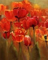 Tulips in the Midst I Fine-Art Print