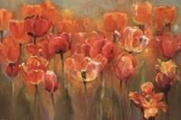 Tulips in the Midst III Fine-Art Print