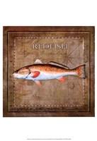 Ocean Fish IX Fine-Art Print