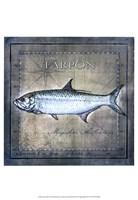 Ocean Fish X Fine-Art Print