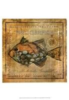 Ocean Fish XI Fine-Art Print