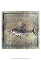 Occean Fish VIII Fine-Art Print