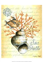Under the Sea IV Fine-Art Print