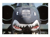 Flying Tigers II Fine-Art Print