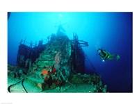 Scuba diver watching a shipwreck underwater Fine-Art Print