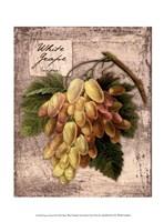 Fresco Fruit II Fine-Art Print