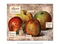 Fresco Fruit VIII Fine-Art Print