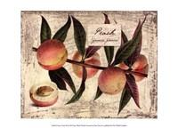 Fresco Fruit IX Fine-Art Print